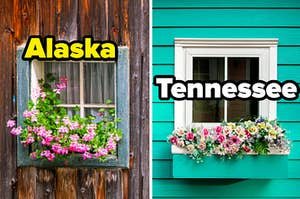 """The wooden window on the left is labeled """"Alaska"""" with a springy window labeled """"Tennessee"""" on the right"""