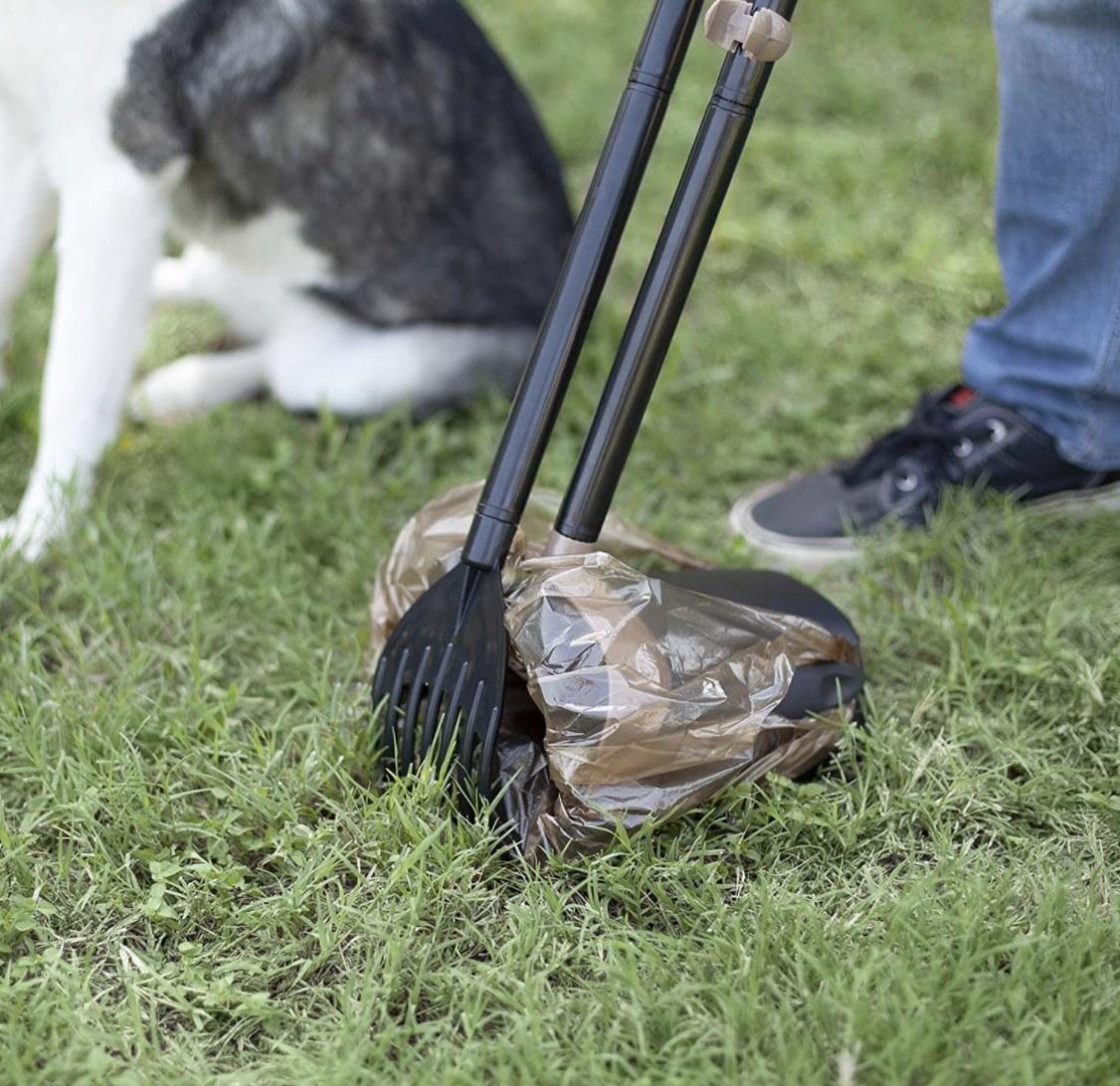 Model utilizing pooper scooper to clean up grass