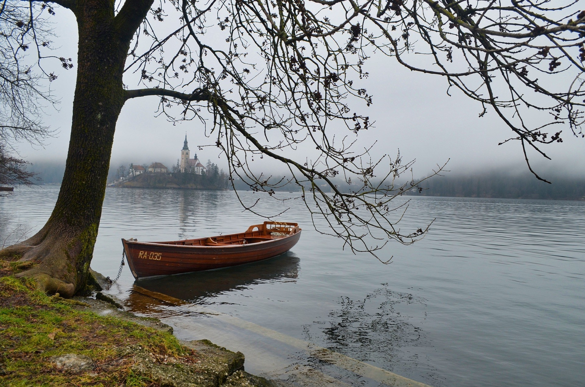 A boat under a tree on Lake Bled, Slovenia.