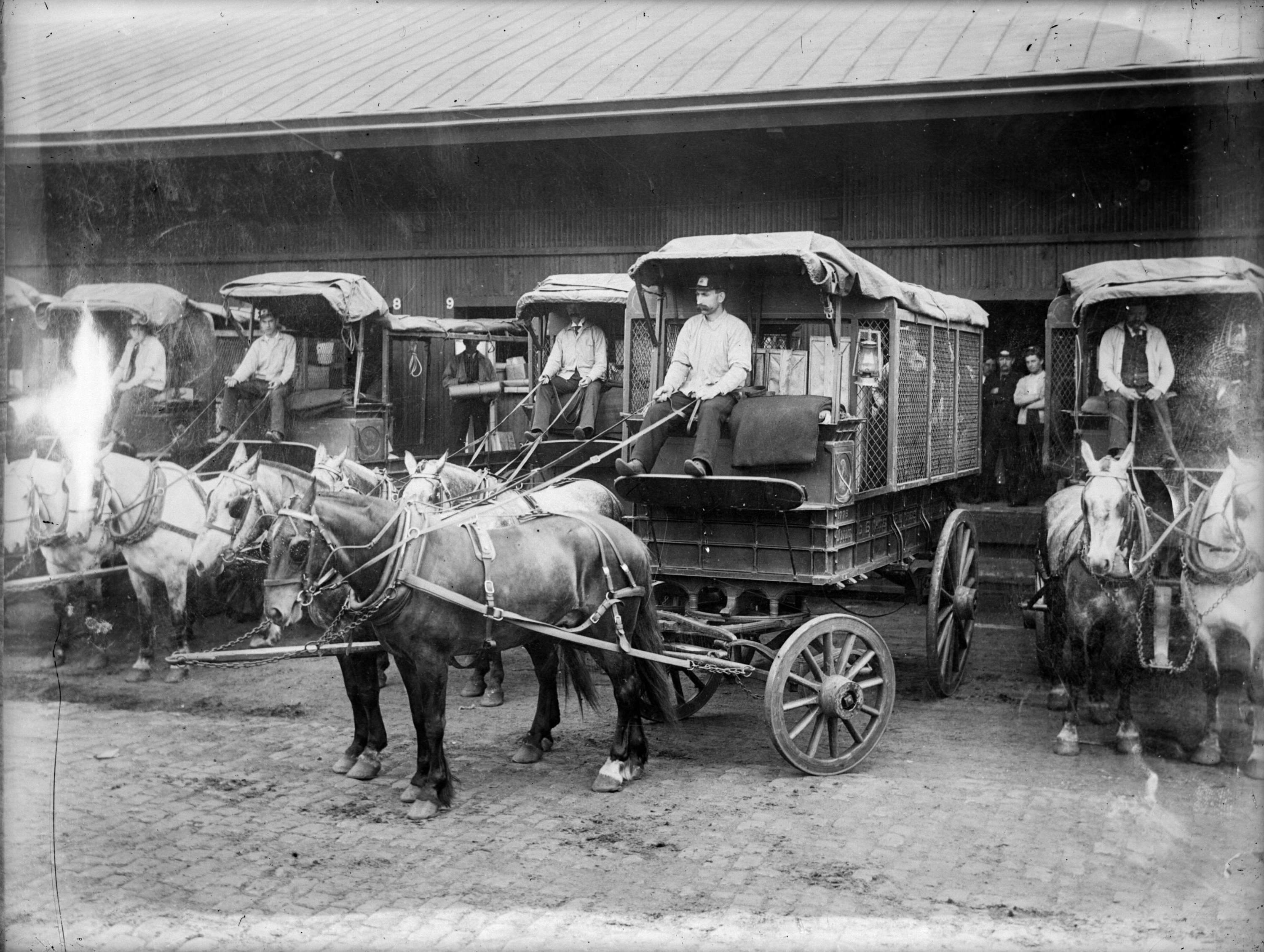 A fleet of horse-drawn carriages with men holding their reins