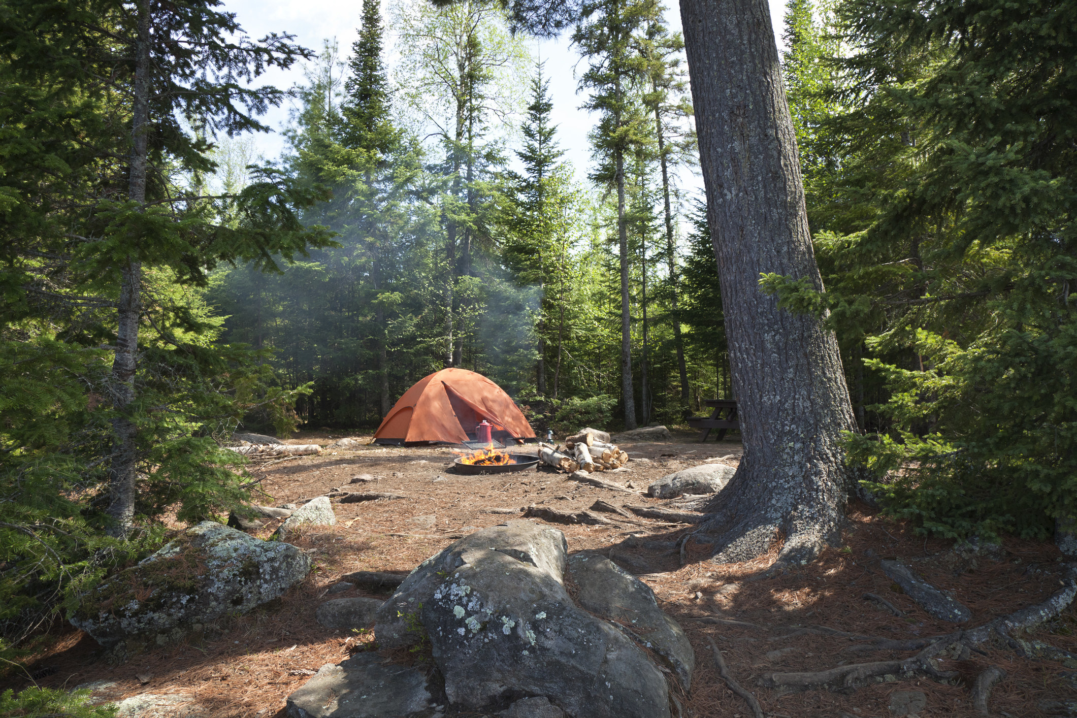 campsite with orange tent and campfire set among pines in the northern Minnesota wilderness