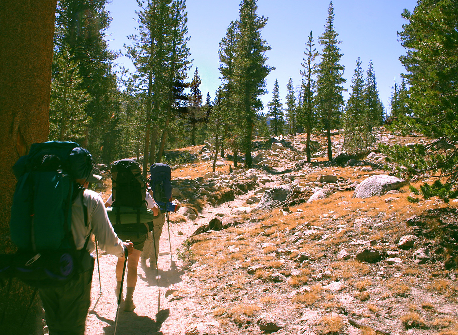 three people with big backpacks and hiking sticks walking along a national park trail