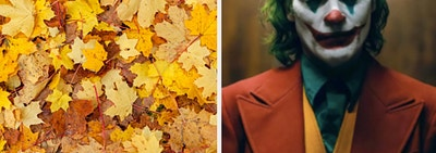 a pile of golden leaves are on the left with the Joker on the right