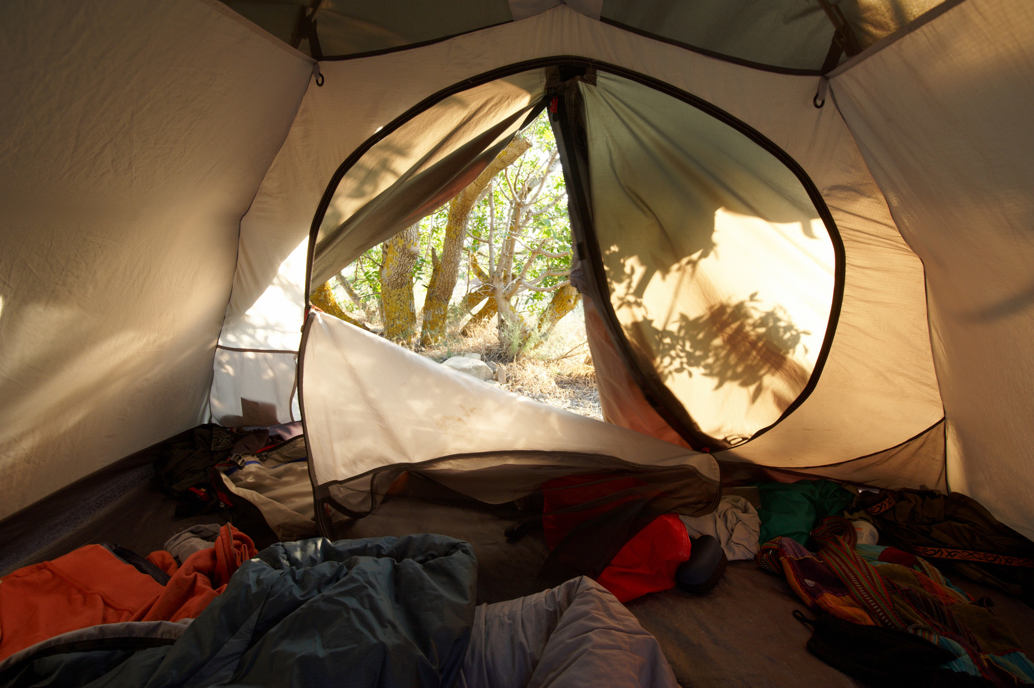 a view from inside a tent, with sleeping bags and clothes on the ground, looking out into the woods