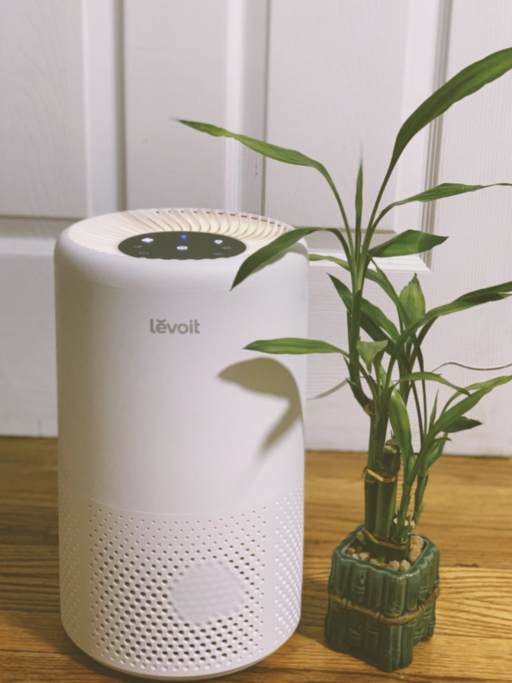 Reviewer image of Levoit air purifier on dresser