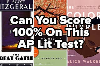 can you score 100% on this ap lit test?