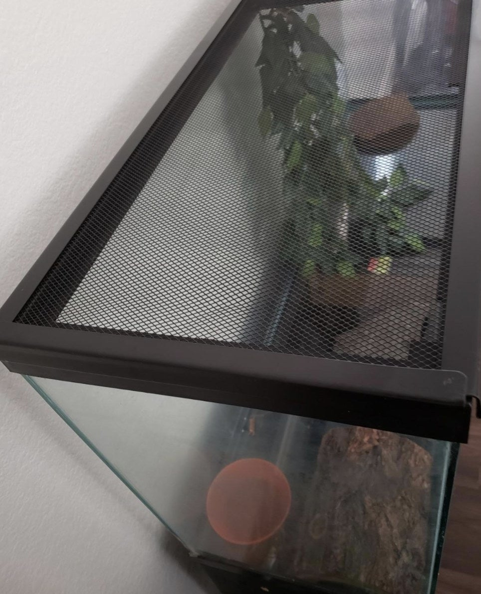 An image of a terrarium enclosure with a screen on top