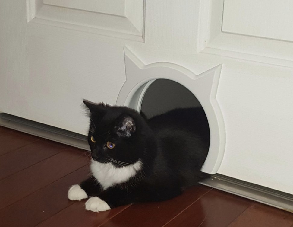 Reviewer's cat leaving the cat-shaped door hole