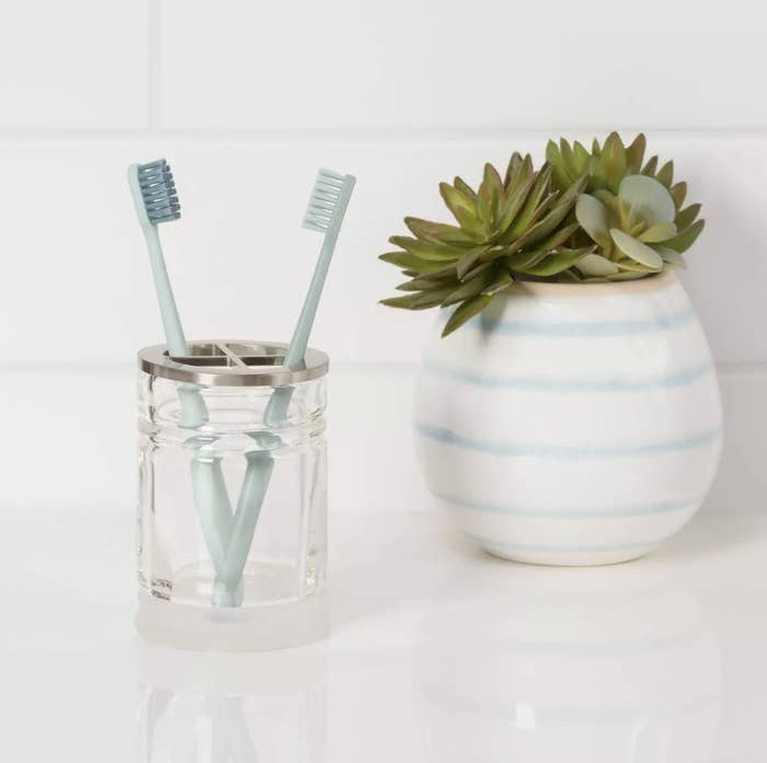 Toothbrush holder with two toothbrushes inside