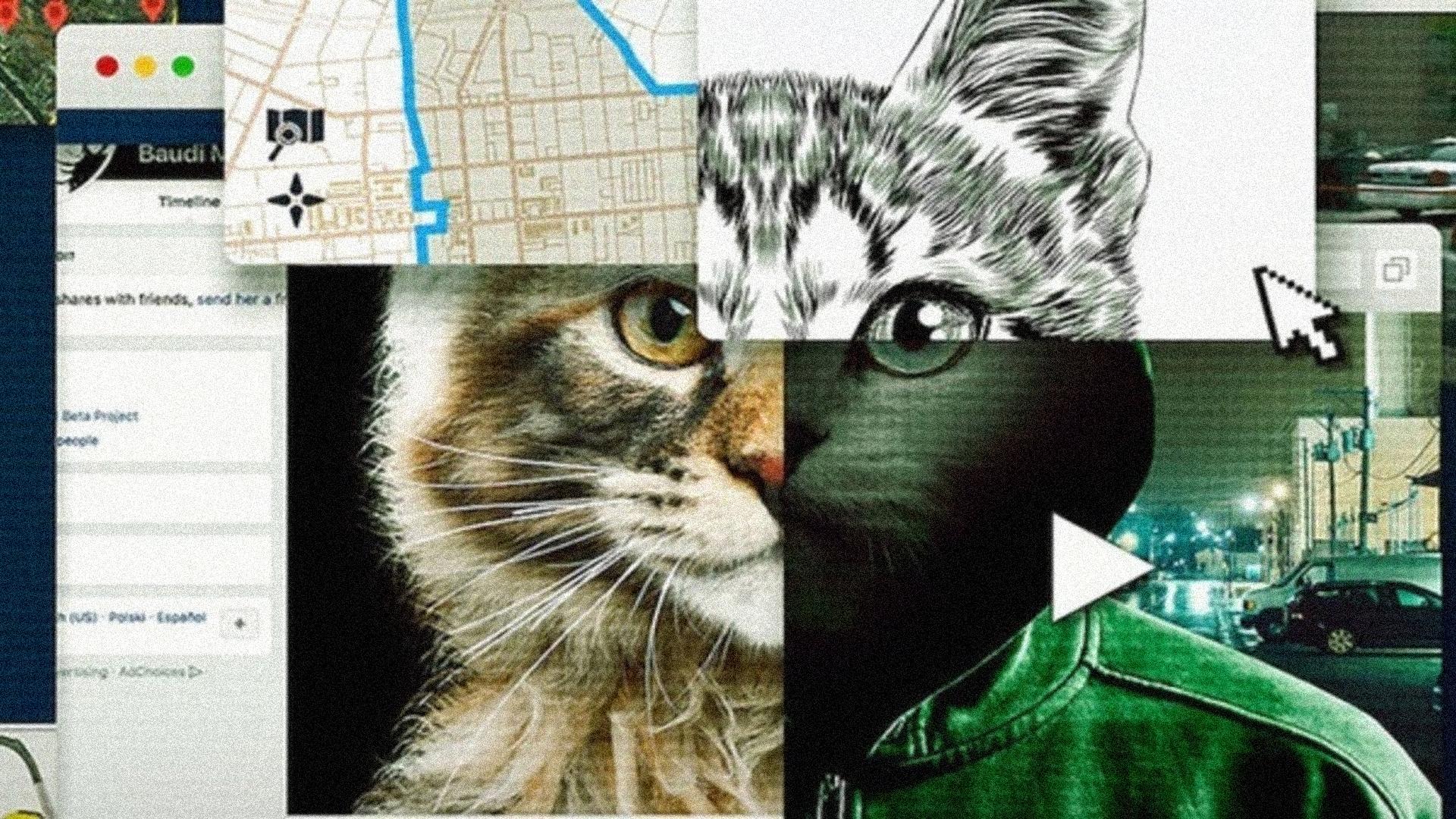 Pantalla de una computadora con imagen de gato, facebook y un mapa