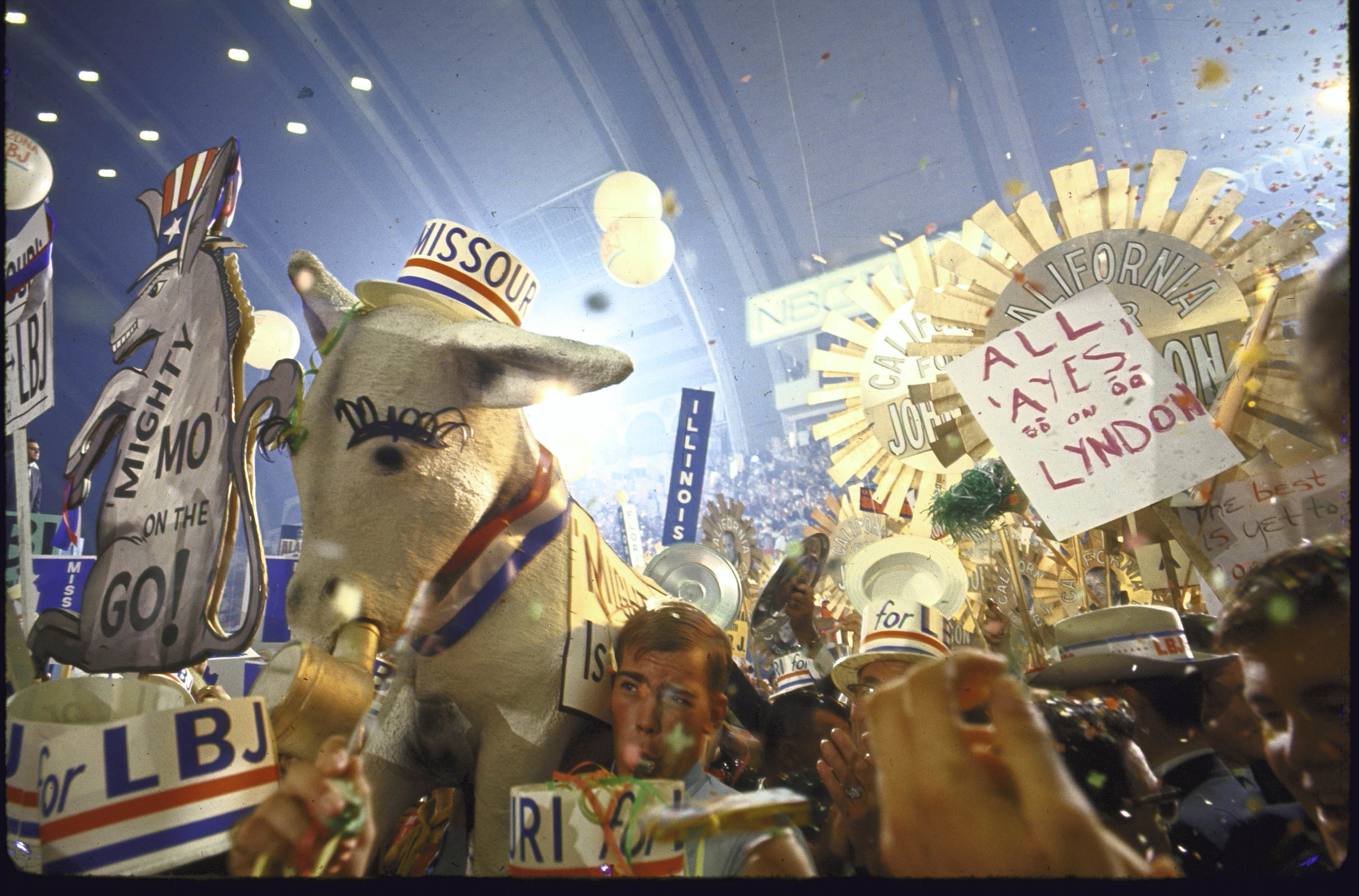 A giant donkey wearing a hat and a lot of people with signs celebrating