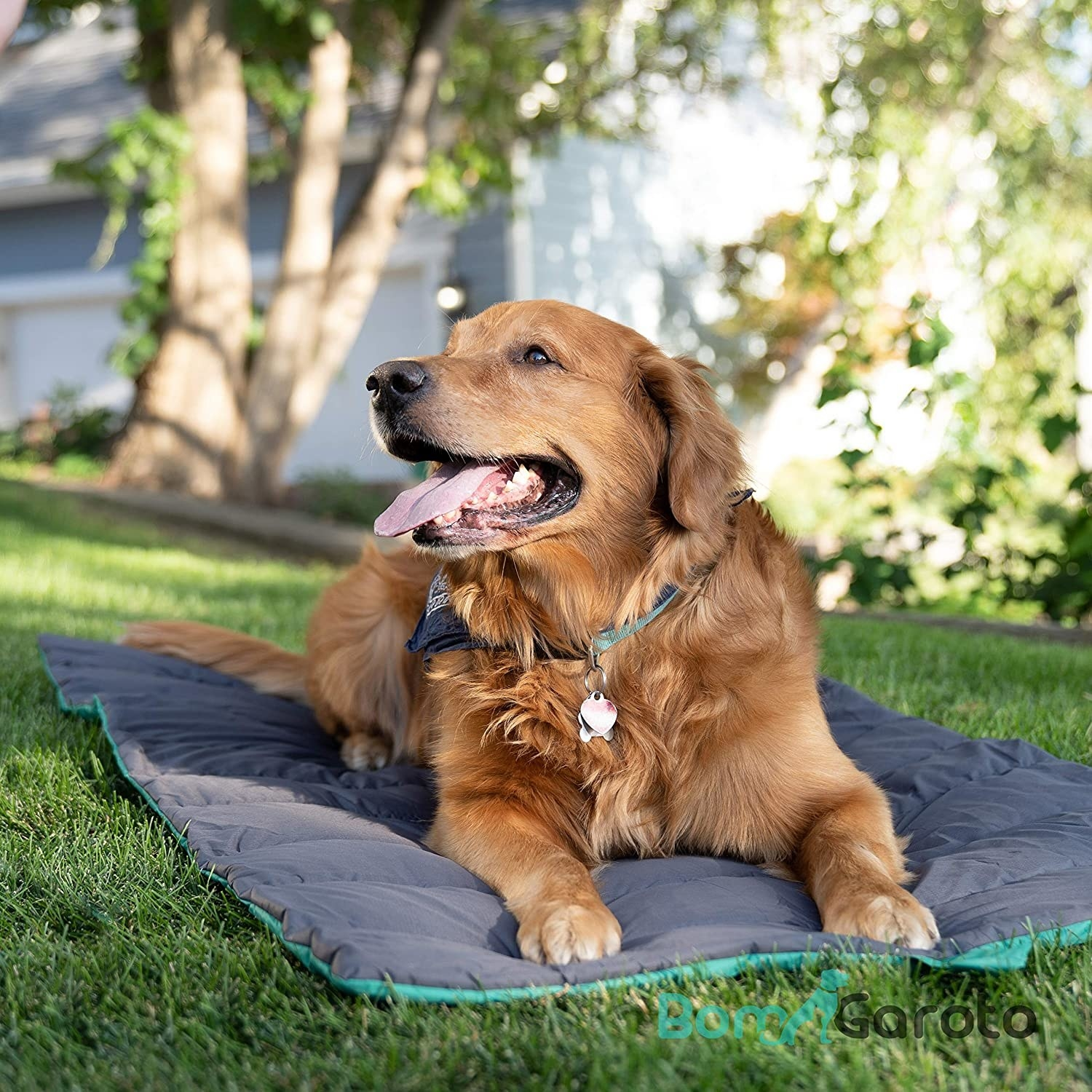 Dog laying on the blanket-like pet liner outside