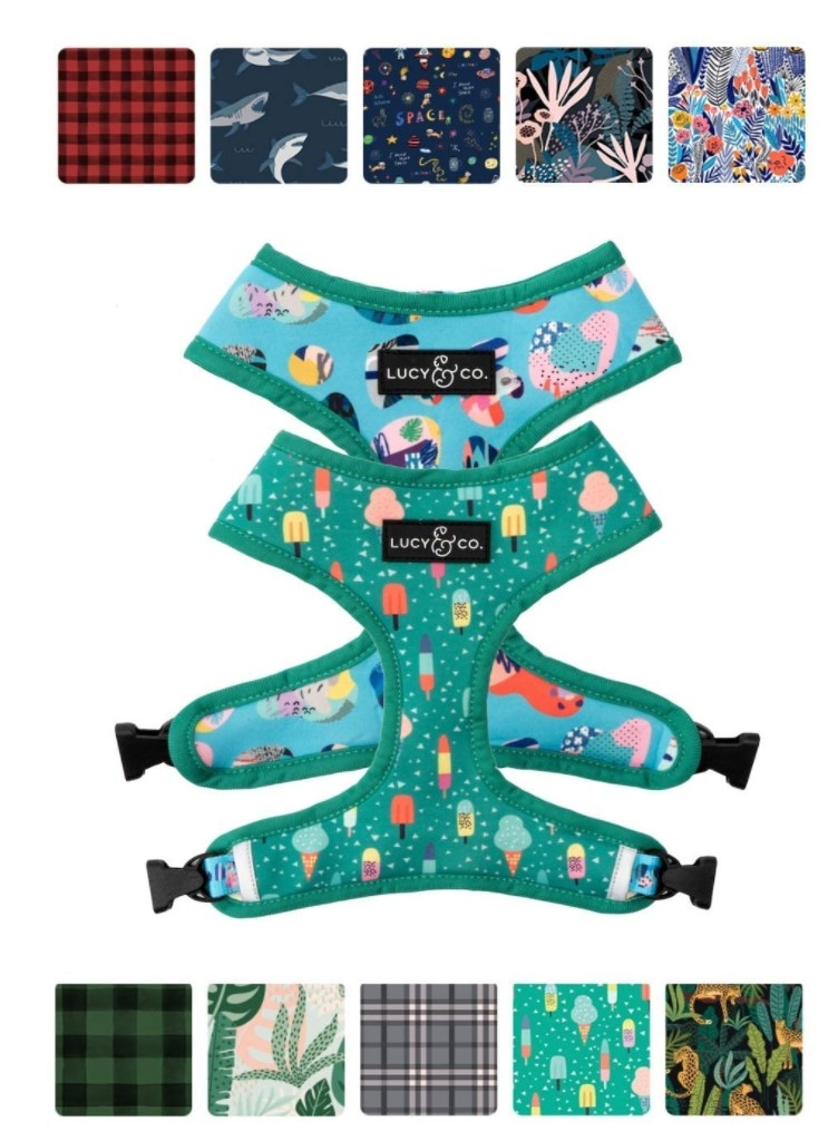 Green popsicle dog harness with swatches of other fabrics