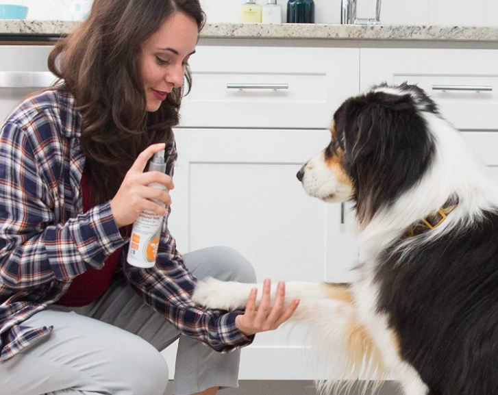 A person applying the spray to their dog's paw