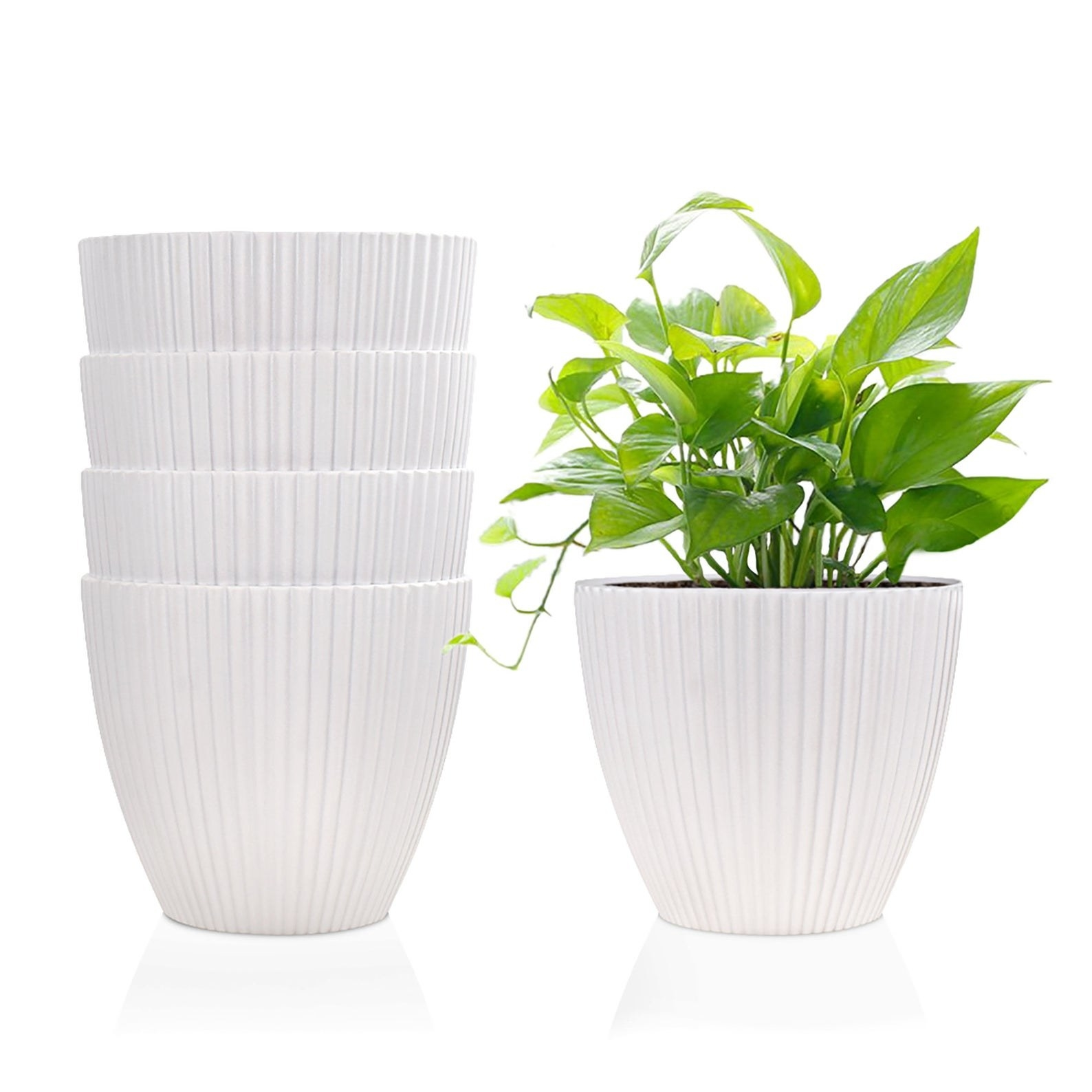 The small white plant pots