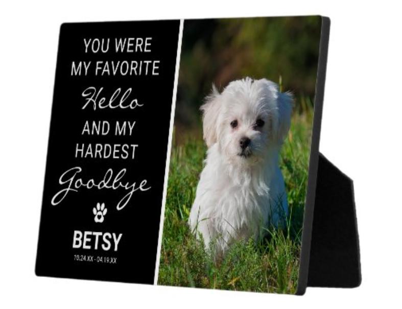 The Favorite Hello | Hardest Goodbye Pet Memorial Plaque.