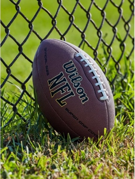 Brown leather football with Wilson and NFL logo