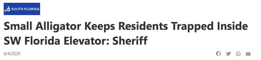 Small Alligator Keeps Residents Trapped Inside SW Florida Elevator: Sheriff