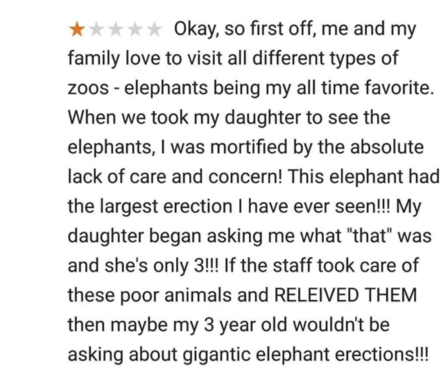"""A customer reviews a zoo, saying they were mortified by an elephant's erection and how she thinks the staff should """"relive them"""""""