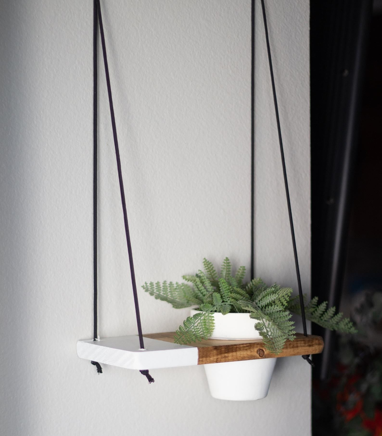 A piece of wood with a hole in the right side with a potted plant in it and a quarter of the left side painted white with black rope connecting it to the wall