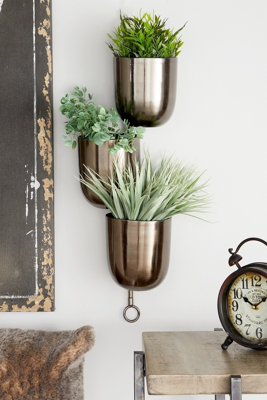 Three brass holders hanging on the wall with different plants in each