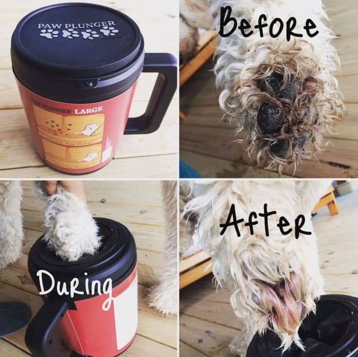 reviewer pic of before, during, and after photo frames of a dog's paw being really dirty, then being put in the cleaning container, and then nice and clean after