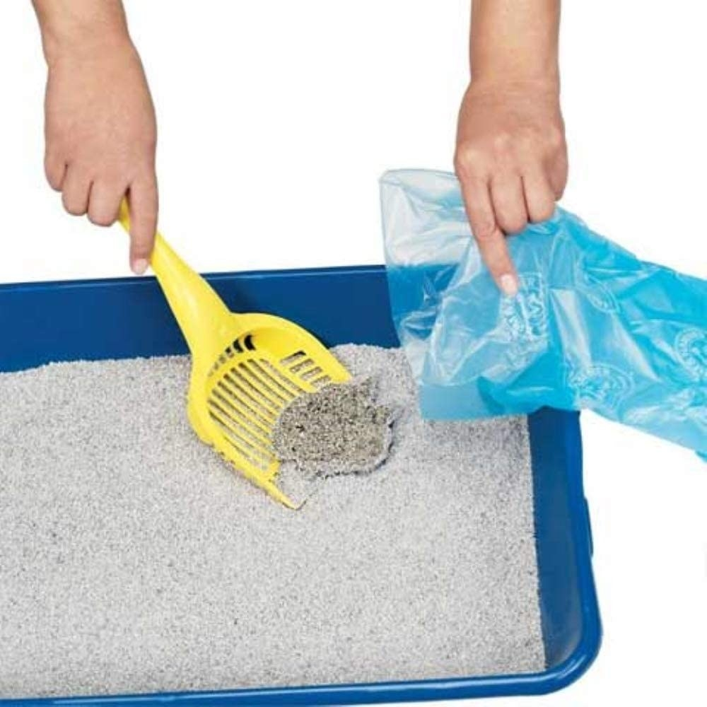 Hand shoveling clump of cat litter into the poop bag