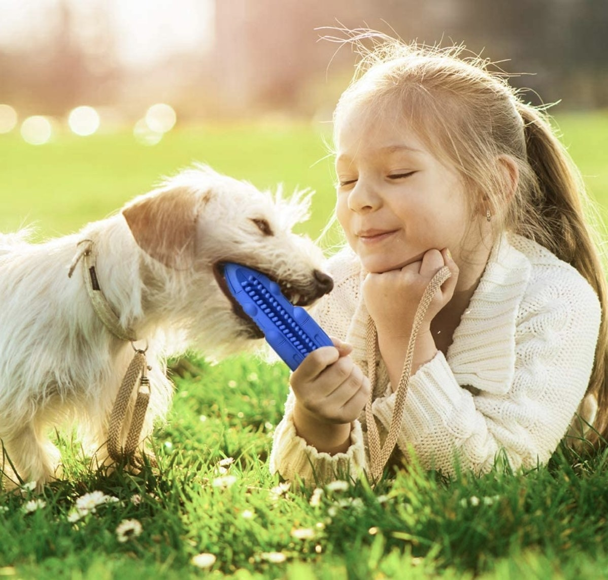 Girl gives dog blue toy