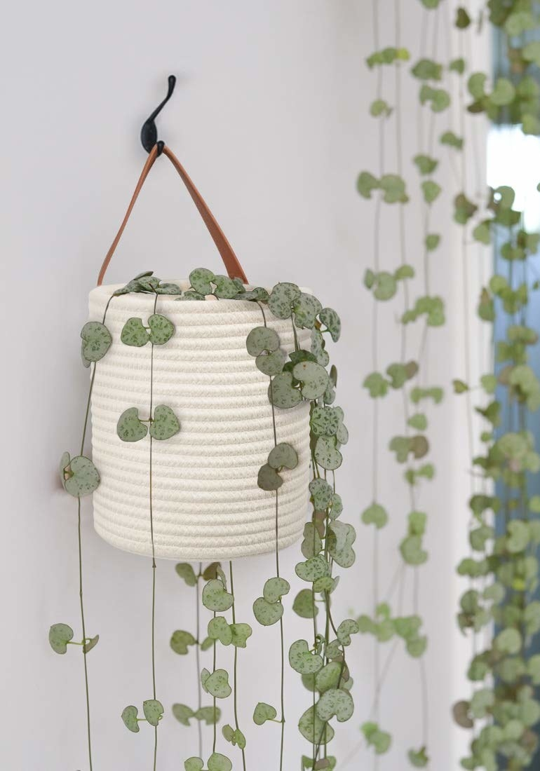 Basket hanging from hook by leather strap
