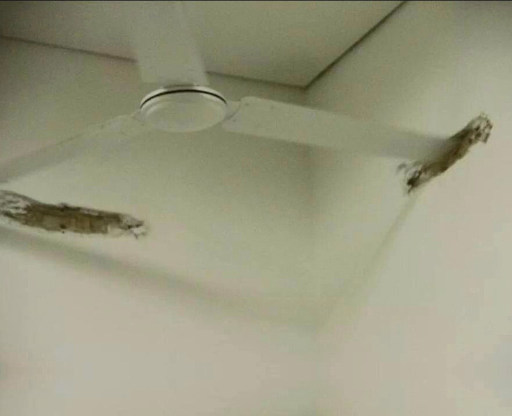 ceiling fan hit a wall