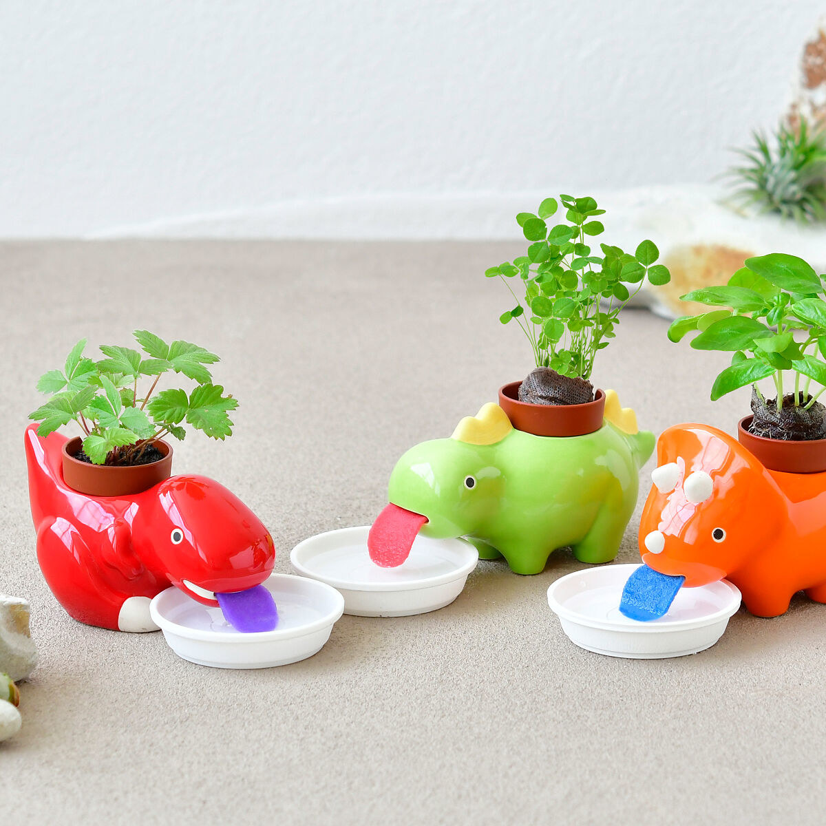 The mini planters in red, green, and orange dinosaur designs
