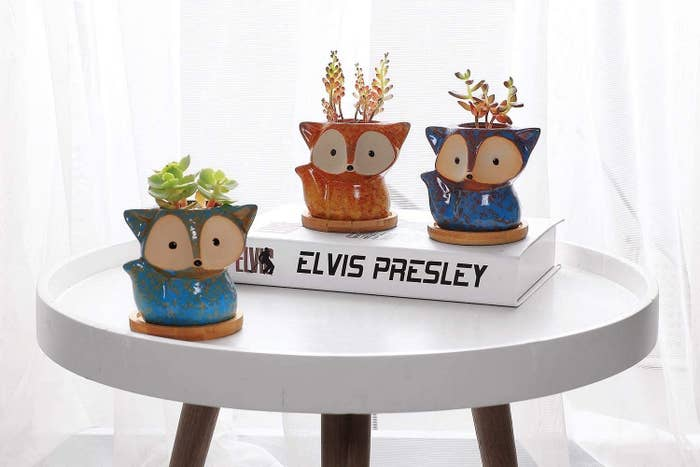 Three fox planters with succulents sit on a table
