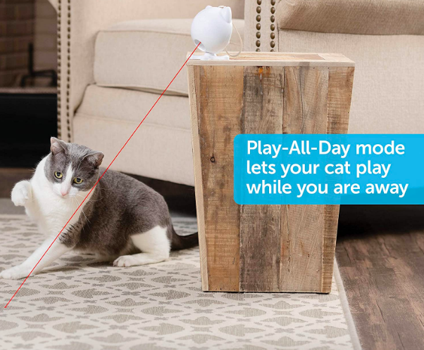 """Action shot of cat chasing laser with graphic that says """"Play-All-Day mode lets your cat play while you are away"""""""