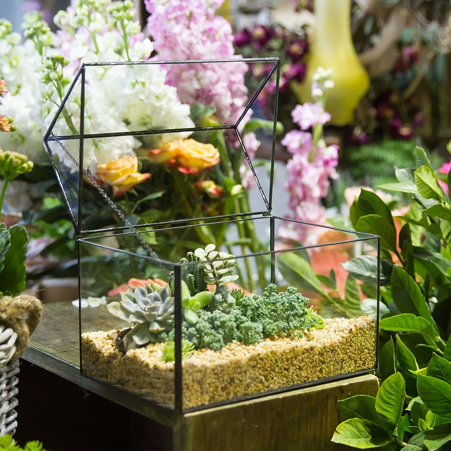glass terrarium with hinged top