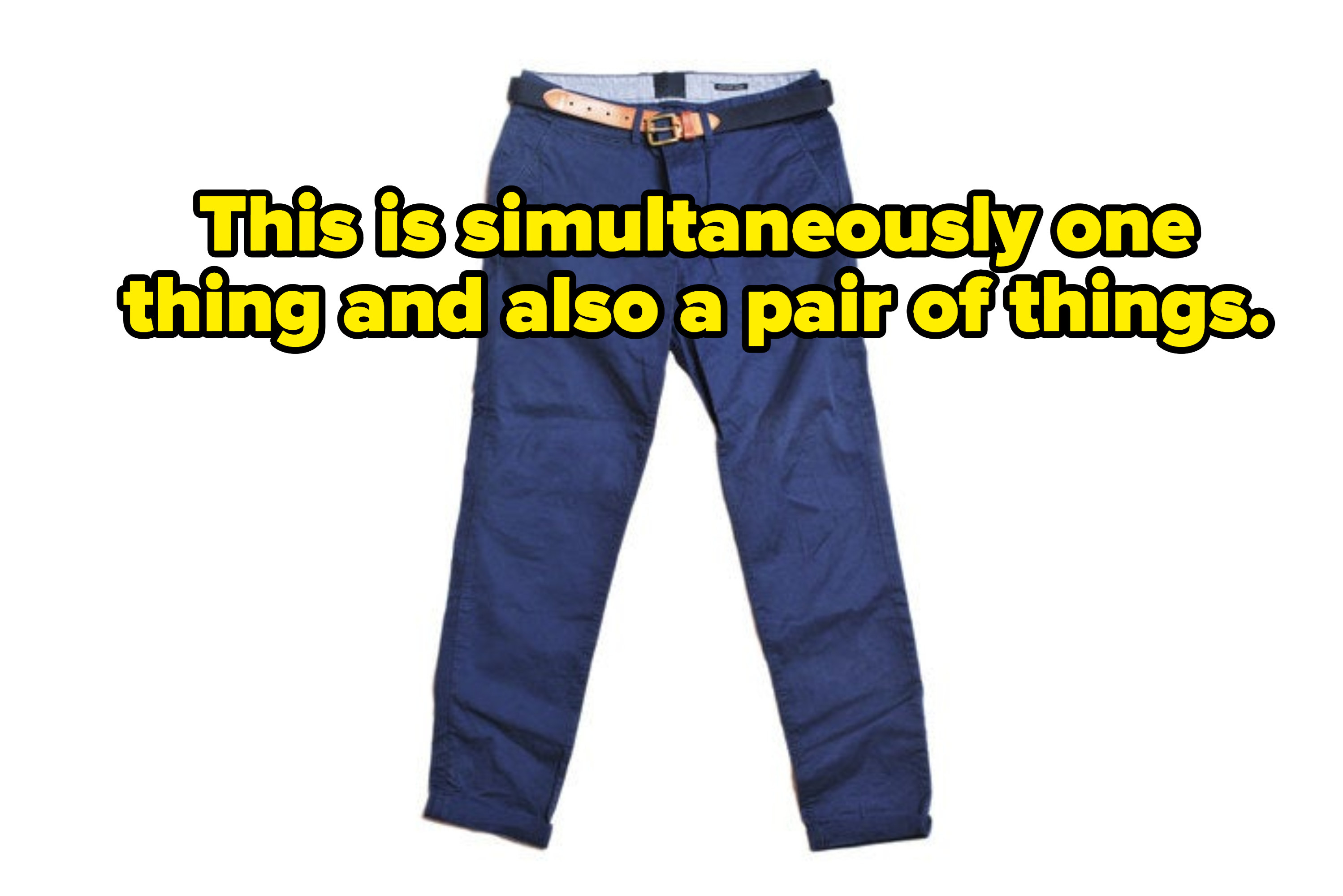 Image of pants that says this is simultaneously one thing and also a pair of things