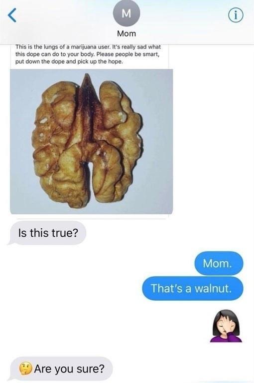 text where a mom sends a joke meme about marijuana filled lungs but it's actually a walnut