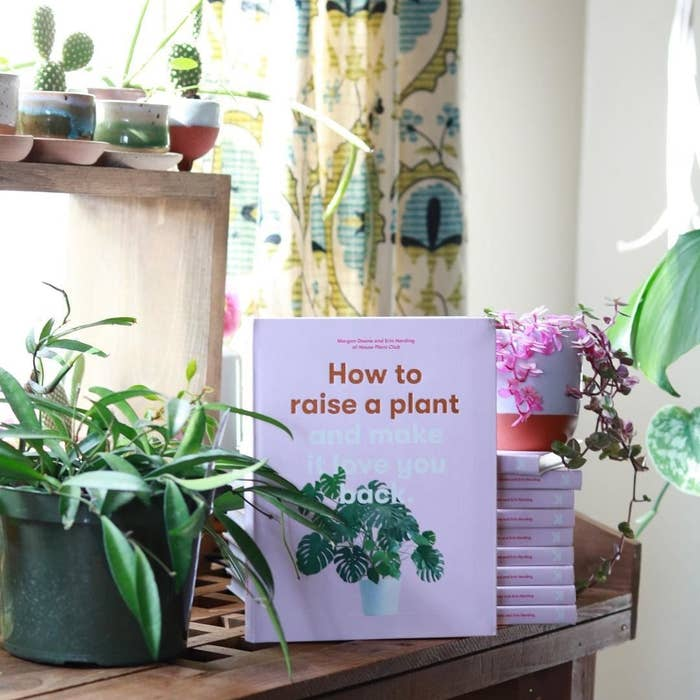 A book called how to raise a plant and make it love you back on a table next to a medium-sized plate