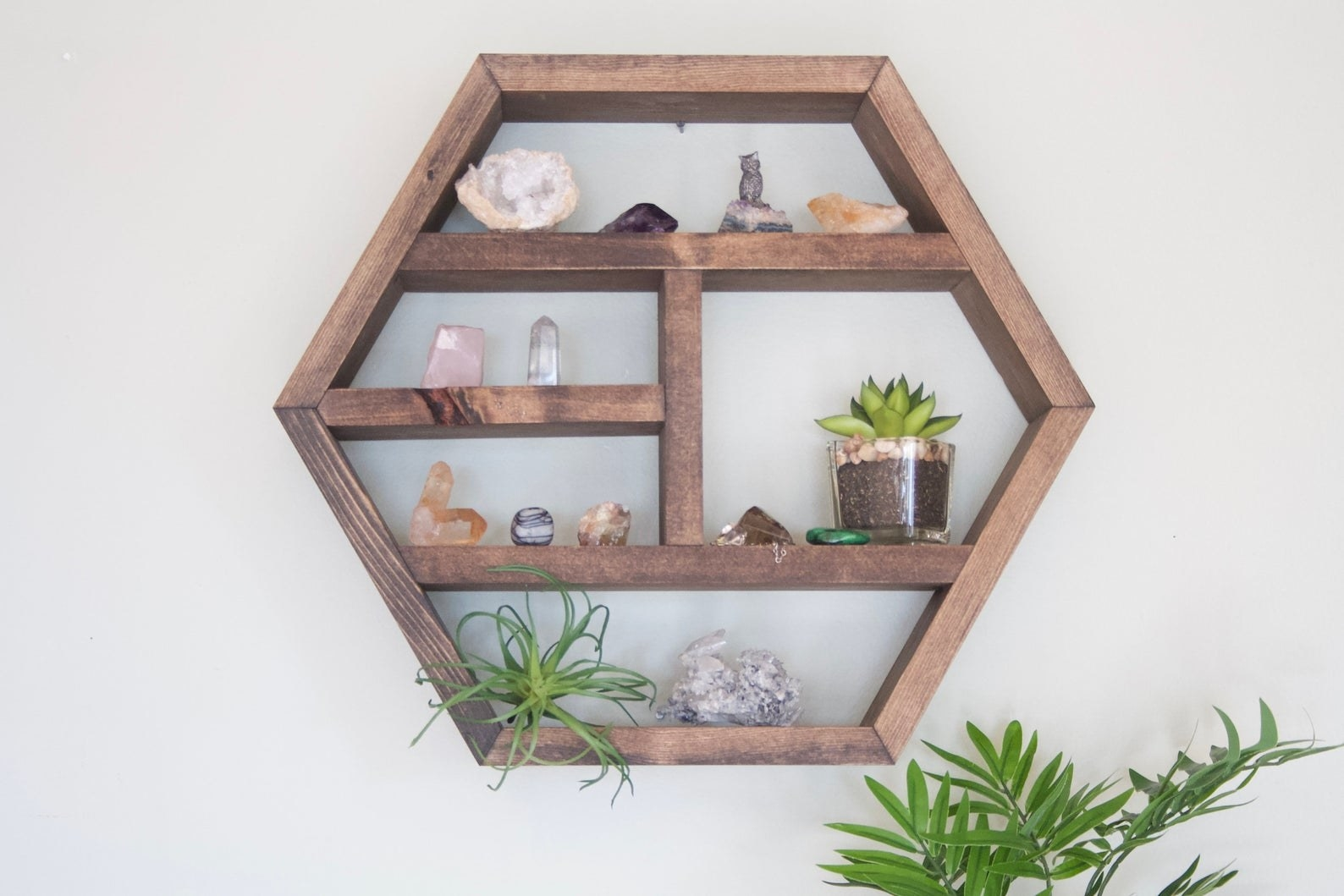 the hexagon shelf holding plants and crystals