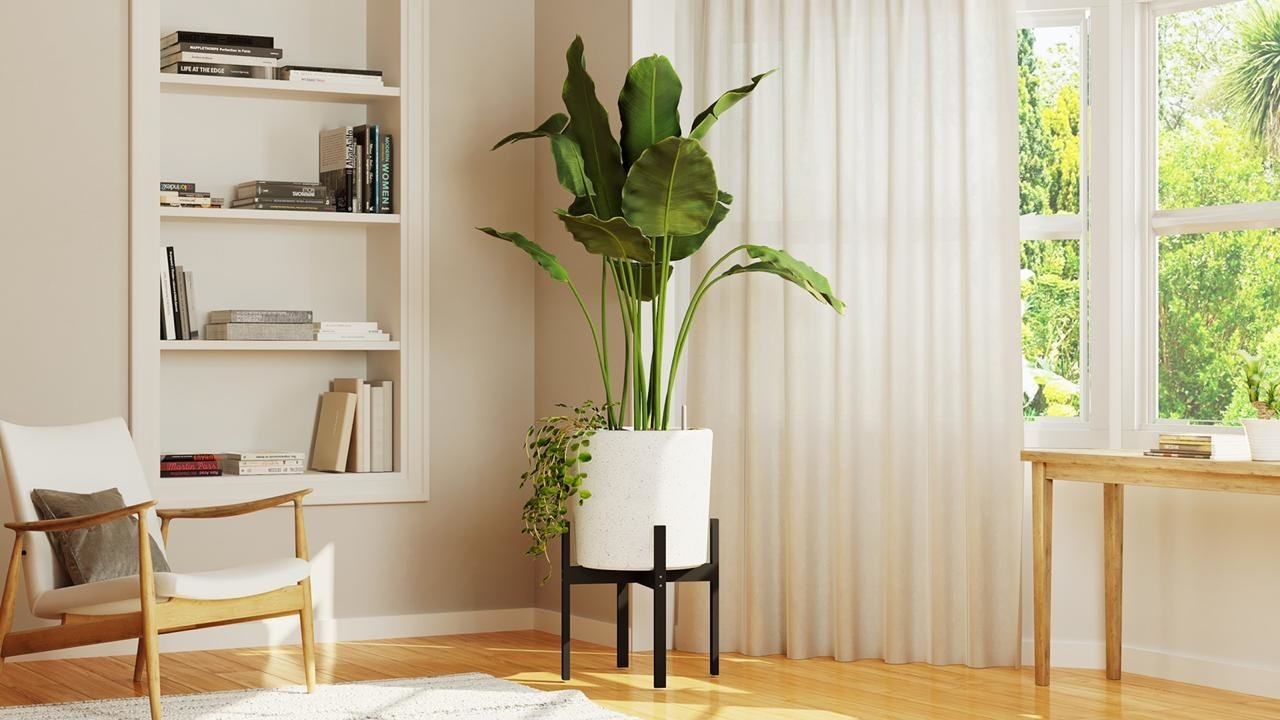 white self watering planter in the corner of the room
