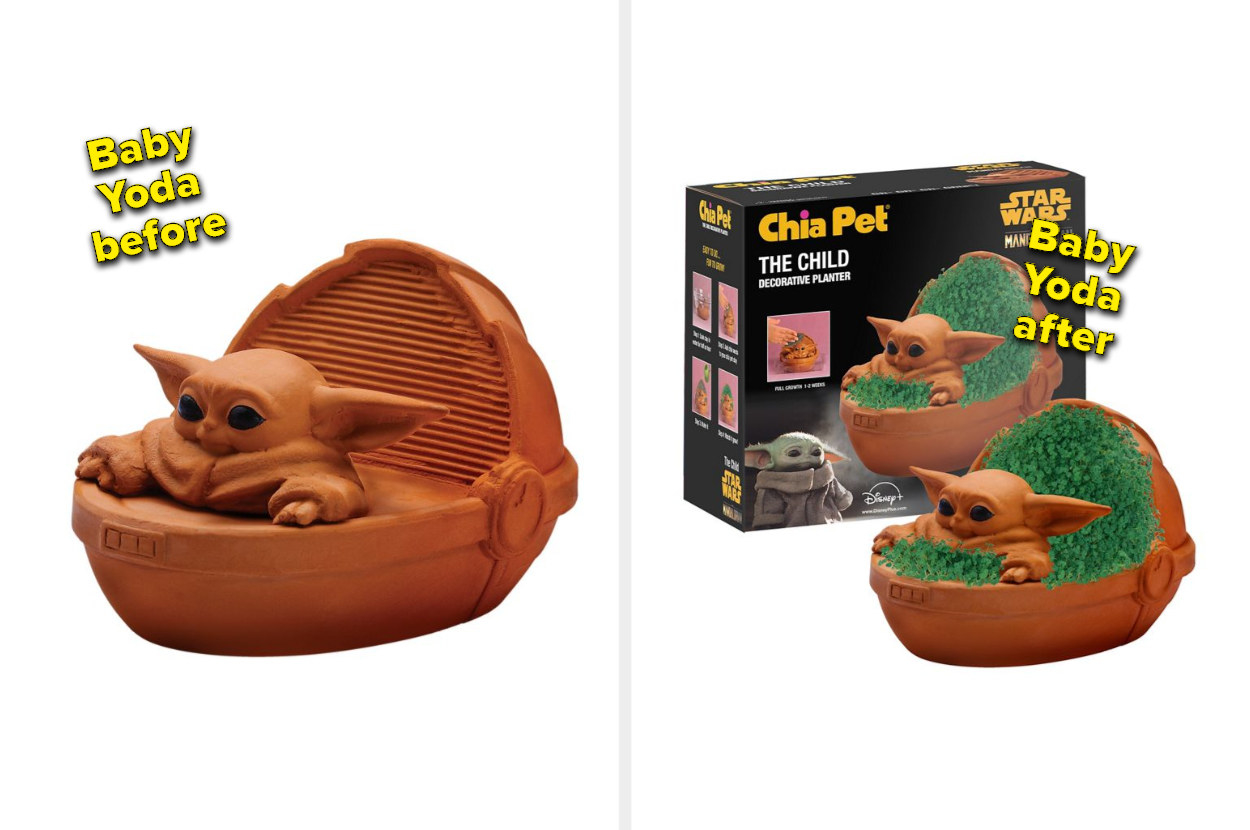 the left side shows a baby Yoda Chia Pet with no plant growing around it. the right side shows the same Chia Pet with greenery growing all around it.