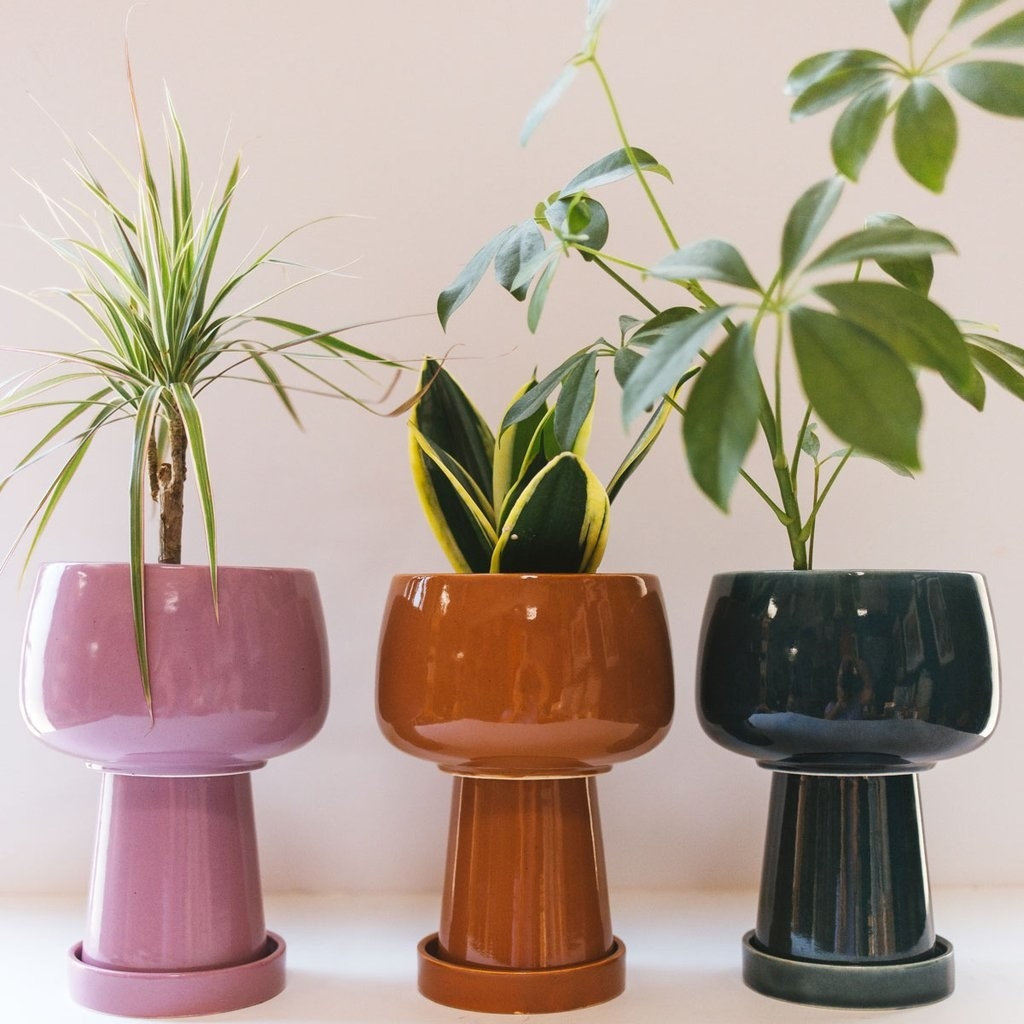 three planters with a bowl-like top, narrower tall base, and a saucer at the bottom
