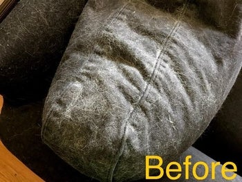 Reviewer's before picture of couch covered in pet hair