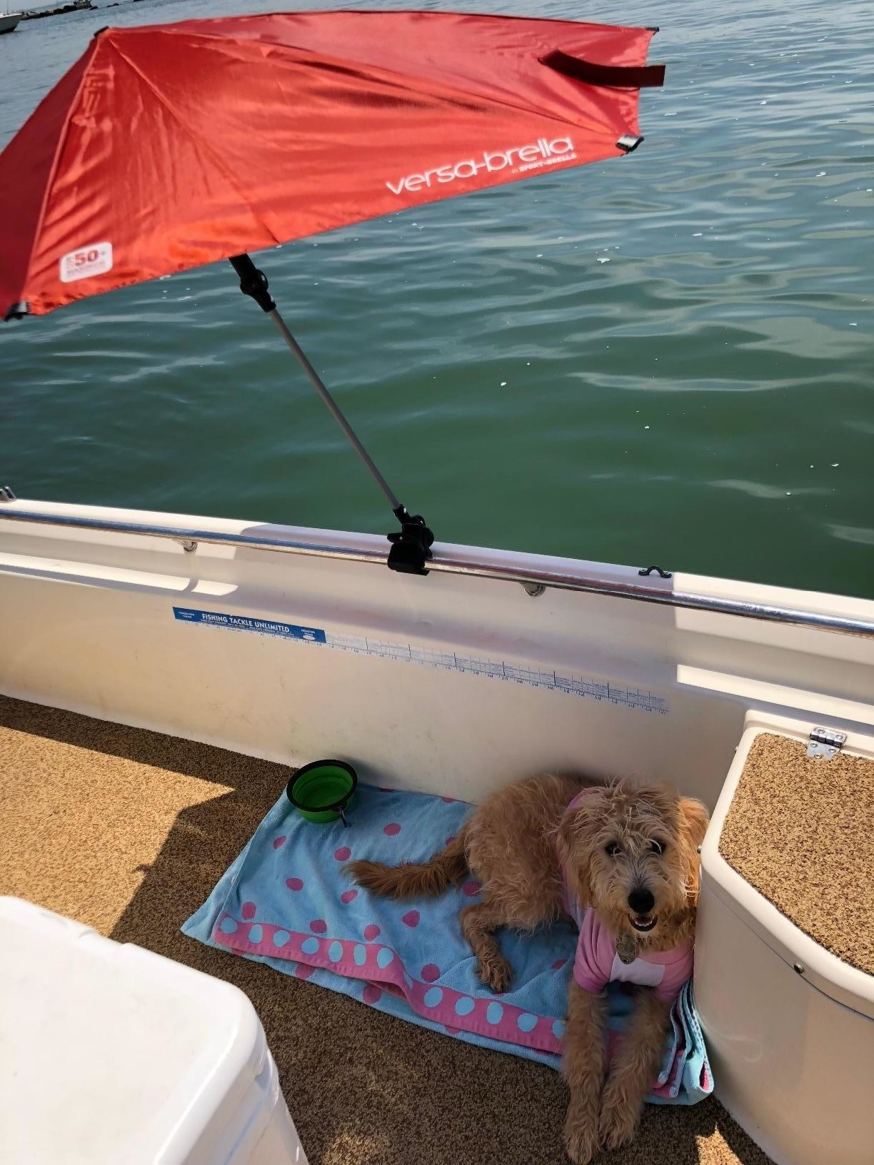 Reviewer photo of the umbrella on the side of a boat with a dog sitting on a towel under it