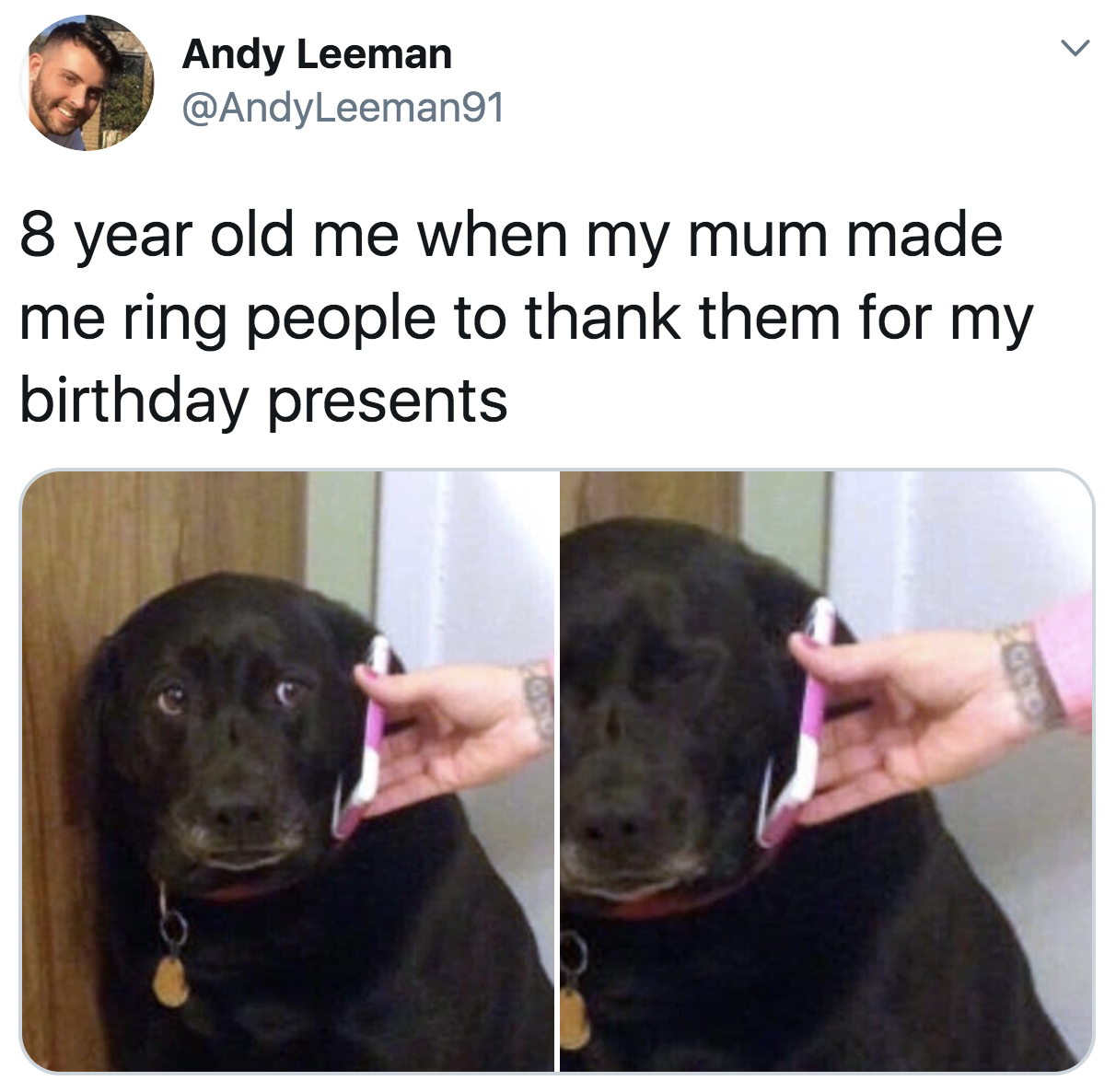 "Tweet with a nervous-looking dog reading ""8-year-old me when my mum made me ring people to thank them for my birthday presents"""