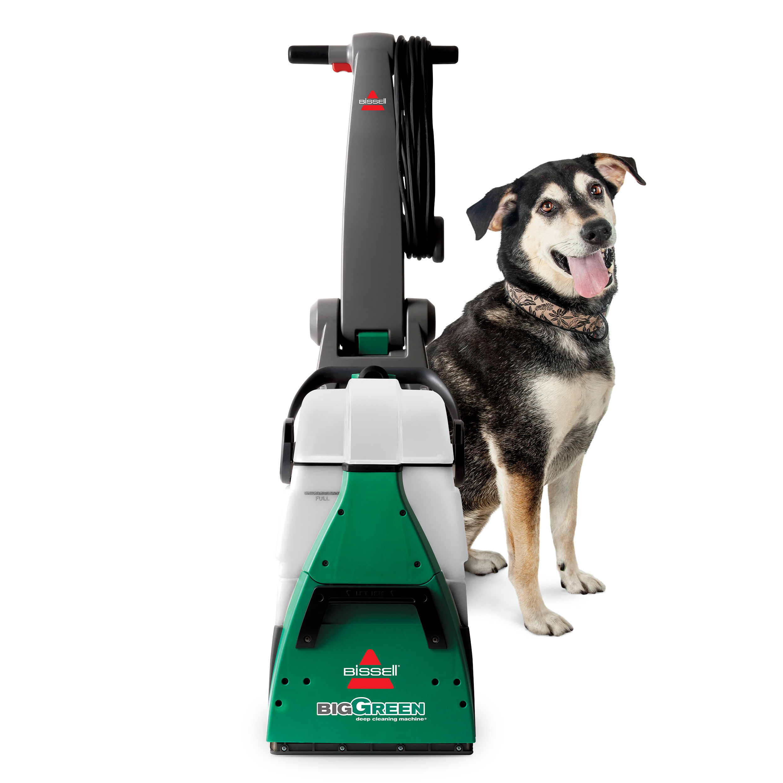 A dog standing next to the carpet cleaner
