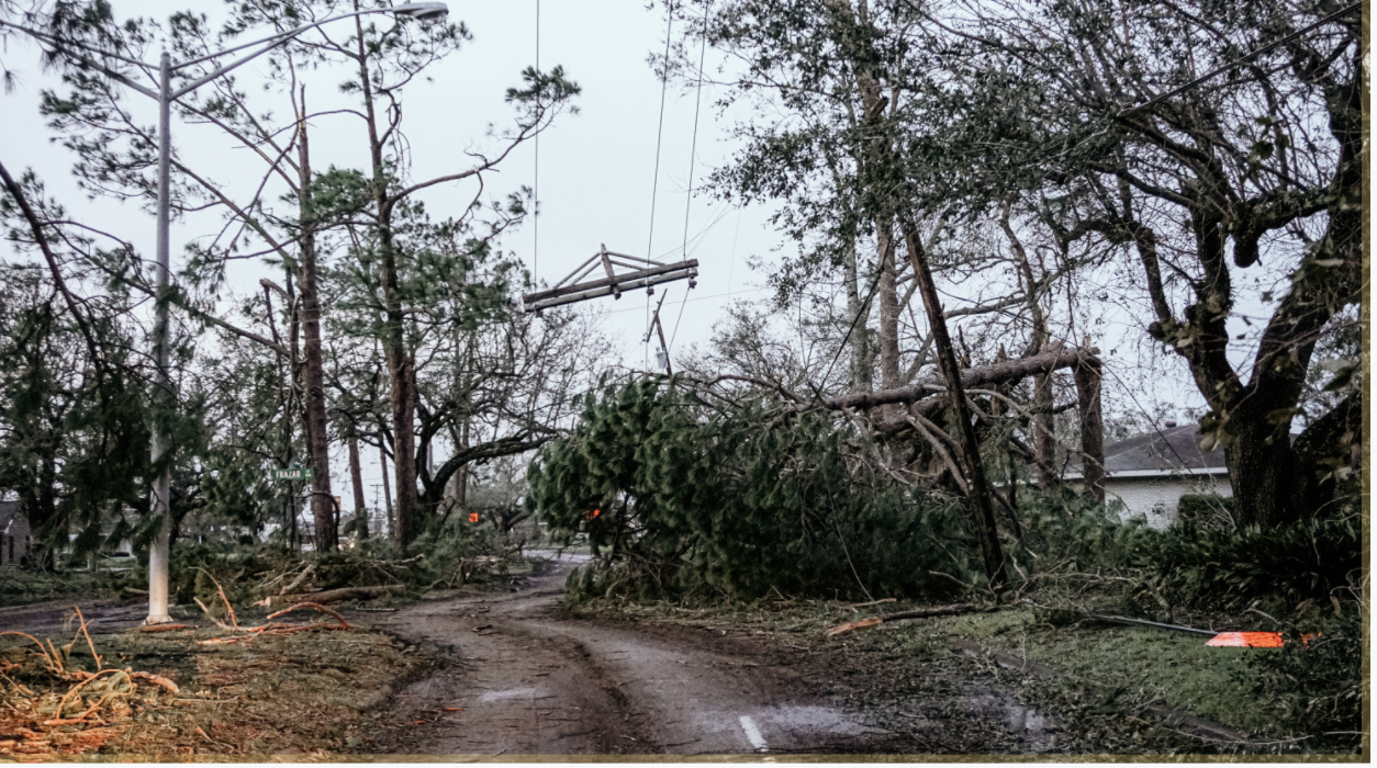 Trees and electrical wires are down over a dirt road after the hurricane in Louisiana