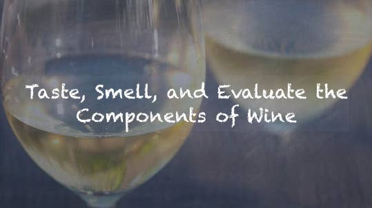Two glasses of white wine and text that says taste smell and evaluate the components of wine