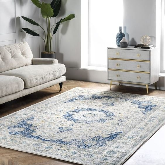 The blue and white patterned area rug
