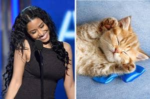 Nicki Minaj smiling and a kitten sleeping.
