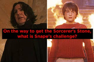 On the way to get the Sorcerer's Stone, what is Snape's challenge?